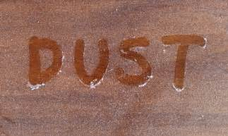 What Zone Am I In For Gardening - 7 strategies to keep dust under control in your house