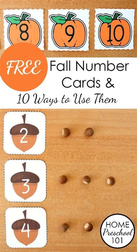 free printable number recognition cards 25 best ideas about fall preschool on pinterest fall