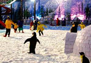 World Entry Fee Snow World Hyderabad Timings Entry Ticket Cost Price