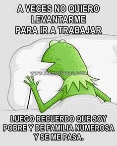 Imagenes Comicas De No Quiero Ir A Trabajar | 1000 images about memes de la rana rene on pinterest