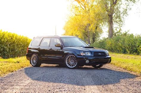subaru fozzy sticker 36 best images about subaru forester xt on pinterest