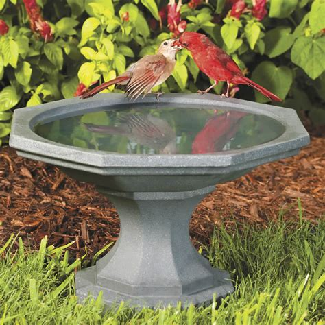 miniature bird bath bird cages