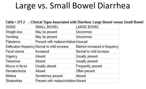 chronic diarrhea in dogs clin pharm 5 git therapy