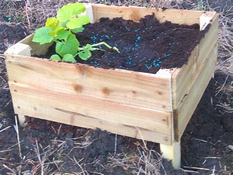 Raised Bed Planter by Building A Raised Bed Planter