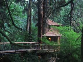 Loft Bed Tent Rainforest Hotel Built In The Trees Tree House Point