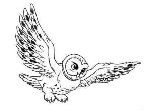 harry potter coloring pages owl flying owl coloring page flying owl coloring page jpg
