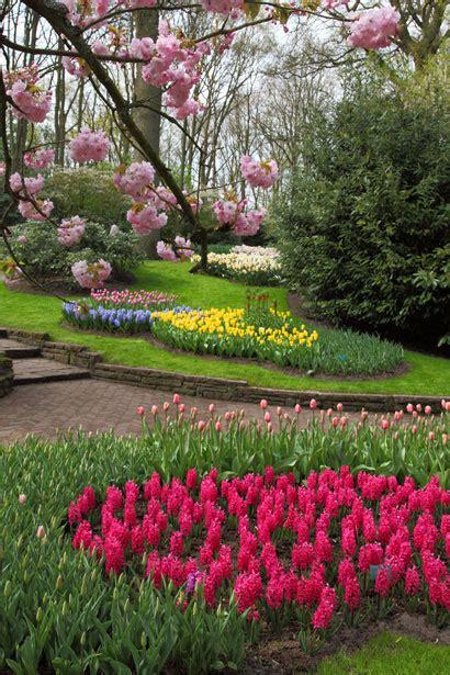 spring flower garden  stock photo public domain pictures