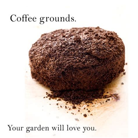 Coffee Grounds For Gardening by Grounds For Your Garden Thanks To Starbucks