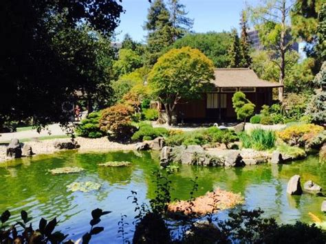 San Mateo Japanese Garden by A Center Island And Statuary Picture Of The San Mateo
