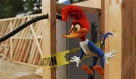 film cartoon woody woodpecker the bernel zone in the live action woody woodpecker