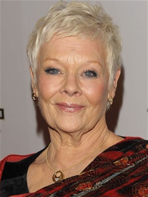 how to get judi dench hairstyle the 25 best ideas about judi dench hairstyle on pinterest