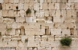 Western Wall Mural wailing wall jerusalem 12 x 8 3 66m x 2 44m buy prepasted