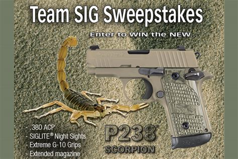 Sig Sauer Sweepstakes - sig sauer p238 scorpion sweepstakes recoil