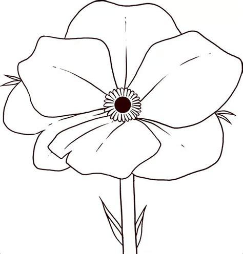 poppy template for children 21 poppy coloring pages free printable word pdf png