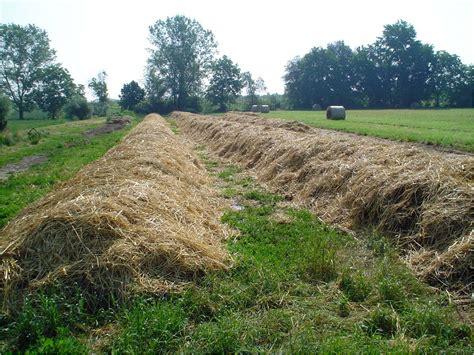 come fare il compost in giardino compost biodinamico compostaggio biodinamico