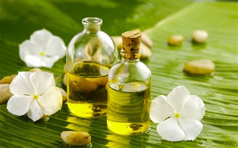 Aroma Therapy sensory stimulation for alzheimer s disease and dementia