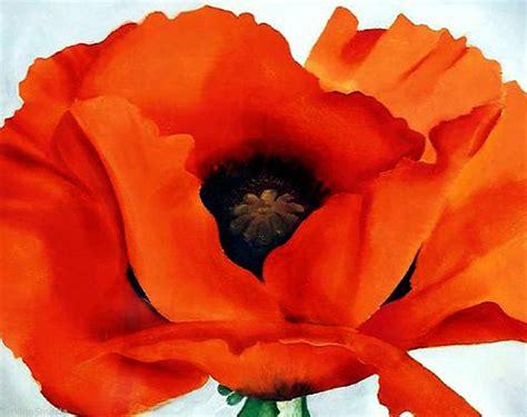 google images poppies poppy google search art pinterest