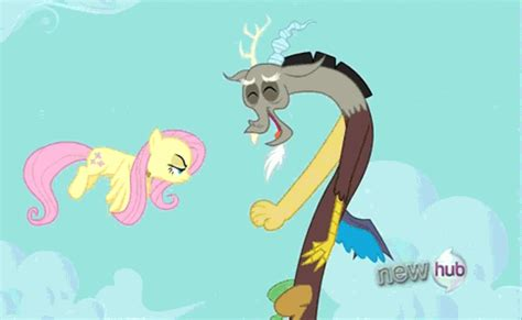 discord quiet fluttershy and big mac shipping page 2 sugarcube