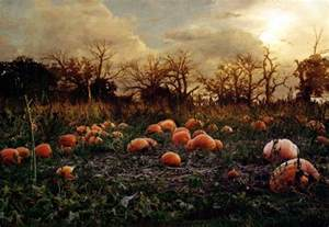 halloween pumpkin patches 301 moved permanently