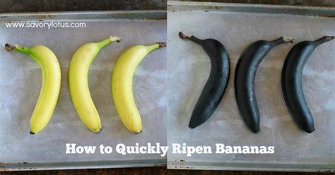 how to quickly ripen bananas savory lotus