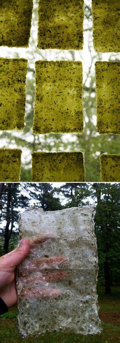 How To Make Seaweed Paper - best seaweed paper recipe on