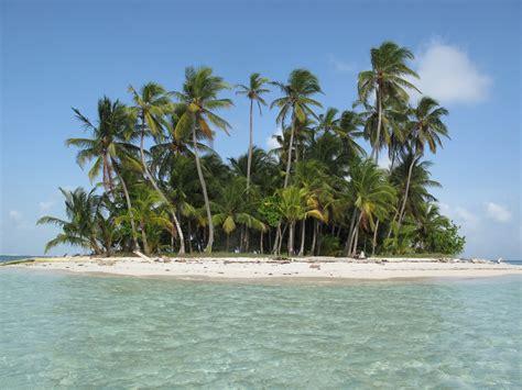 with palm tree island carlito treks sailing san blas