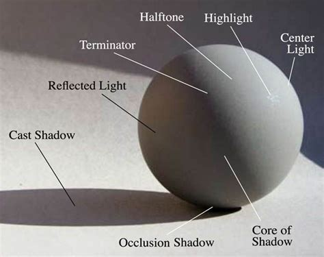 Understanding Light by 77 Best Images About Value Scale Shading On