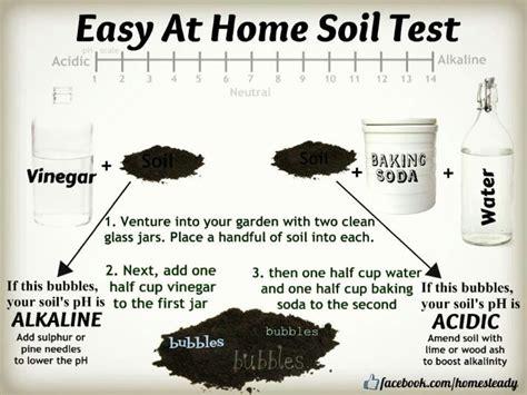 soil ph test gardner pinterest
