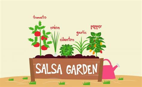 Salsa Garden Ideas Tomato Gardening Ideas Tips Trends And Information Ugaoo