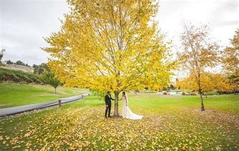Wedding Ceremony Ideas New Zealand by Garden Wedding Ceremony Garden Wedding Ideas Outdoor