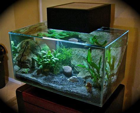 Desk Top Aquarium by Desktop Aquarium Article Pinkley