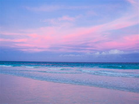 pink sand beach pink sand beach harbour isle bahamas wallpaper free