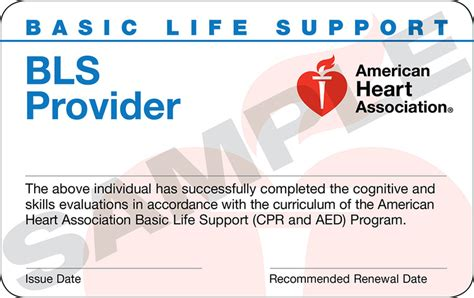 bls healthcare provider card template american association healthcare provider bls cpr aed