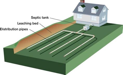 leach bed caring for septic systems old house online old house online