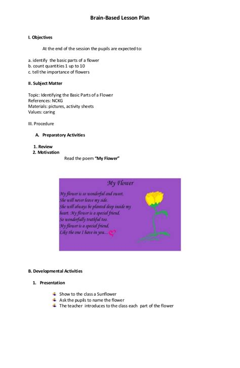 brain based lesson plan template brain based lesson plan