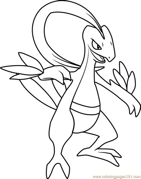 pokemon coloring pages grovyle 48 pokemon coloring pages grovyle dibujos de
