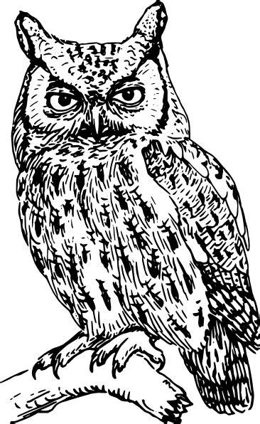 owl clip art at clker com vector clip art online