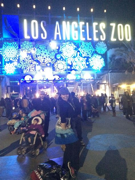 187 The Los Angeles Zoo Hippos And Zoo Lights January 2 Brighten Up Your With La Zoo Lights
