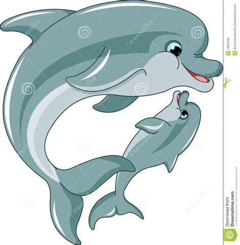 dolphin mother and baby royalty free stock images image