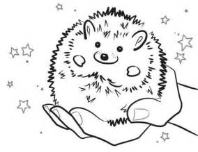 baby hedgehog smiling colouring pages bulk color