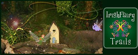 fairies a guide to the celtic fair folk books story trails