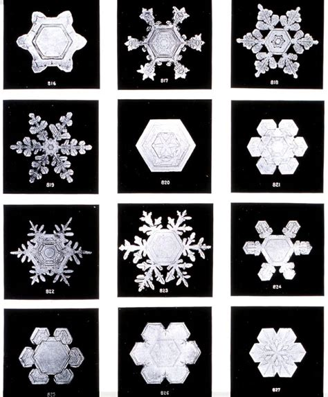 pinterest printable snowflakes great free printable of some of the first snowflakes ever