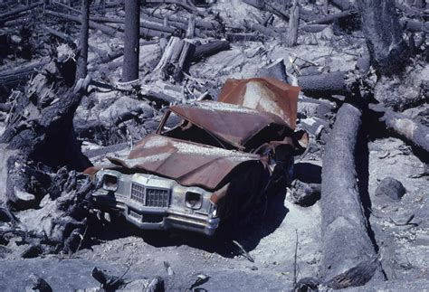 st effect mount st helens eruption damage www pixshark