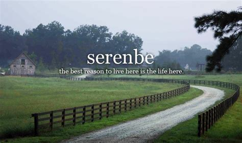 serenbe georgia serenbe things to do around atlanta pinterest