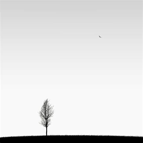 photos minimalistes par hossein zare ozon3