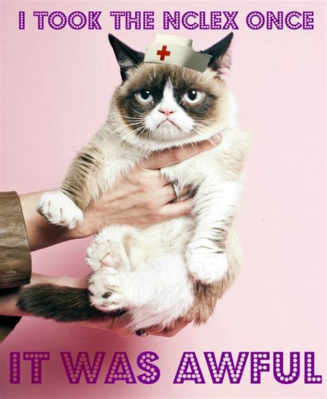 Nclex Meme - 102 best images about nursing school humor on pinterest
