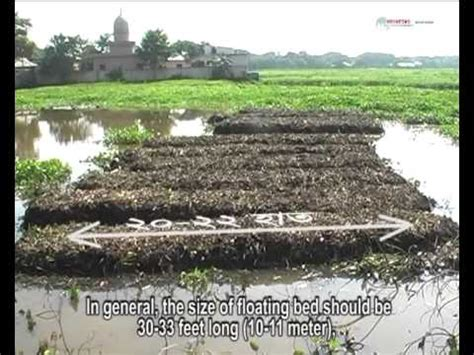 how to do floating vegetable garden step by step