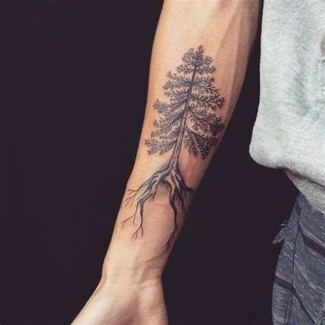 tattoo meaning pine tree pine tree tattoos pinteres