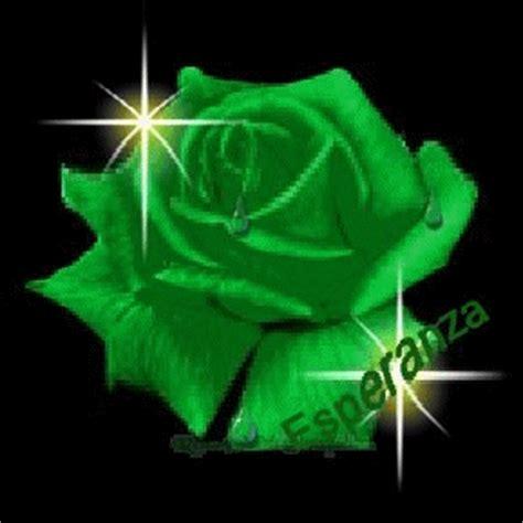 imagenes de flores verdes bienvenido a tu rincon 184 184 180 175 las flores 184 184 180 175