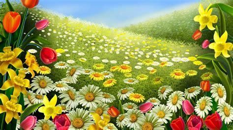 beautiful flower wallpaper youtube